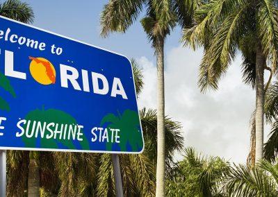 Florida Roots